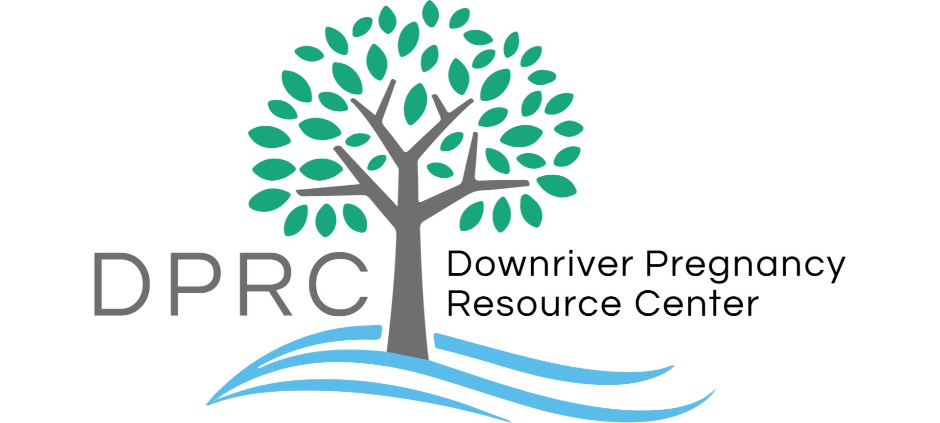 Downriver Pregnancy Resource Center